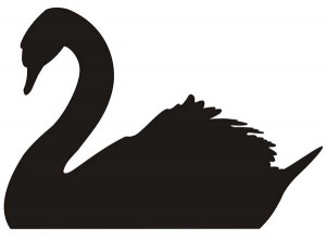 Black Swans Stock Market Crash Predictions 2012